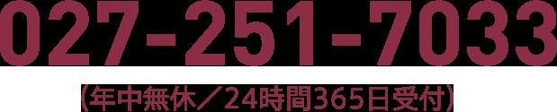 027-251-7033